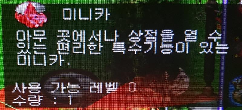 정령나무줄기1.jpg